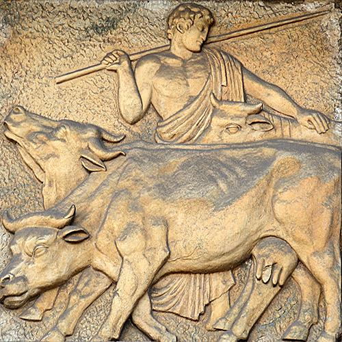 A criação de gado.
